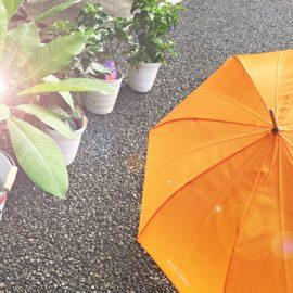 雨の日があれば必ず晴れの日が来る。